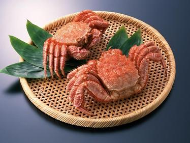 【长知识】生吃虾蟹螺蛳会使寄生虫侵入大脑
