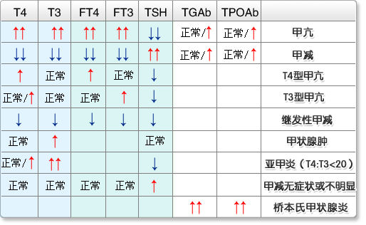 认识TT3、TT4检查的临床意义