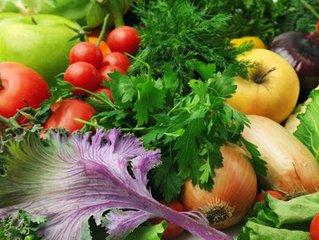 对于类风湿的饮食保健该怎么做?