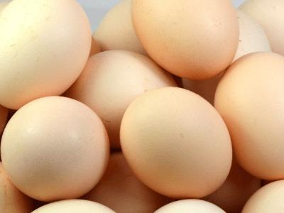 一天一鸡蛋到底好不好?