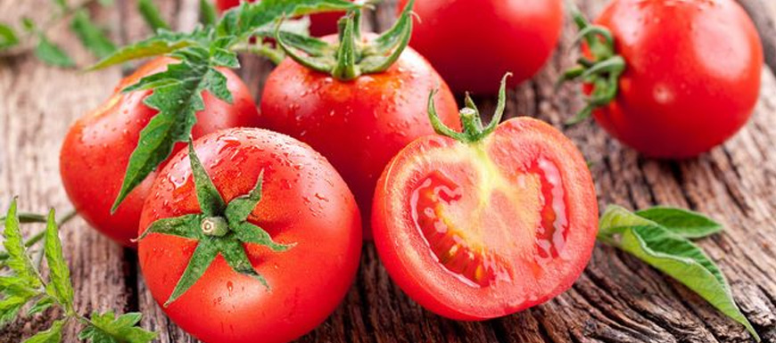 为啥现在番茄都硬邦邦的 放一个月都不坏