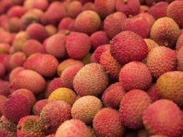 这种水果吃多了会要命,别怪没提醒