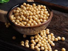黄豆竟然可以减肥 黄豆的食用禁忌有哪些