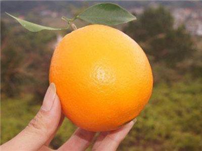 没想到孕妇吃橙子的好处竟然有这么多